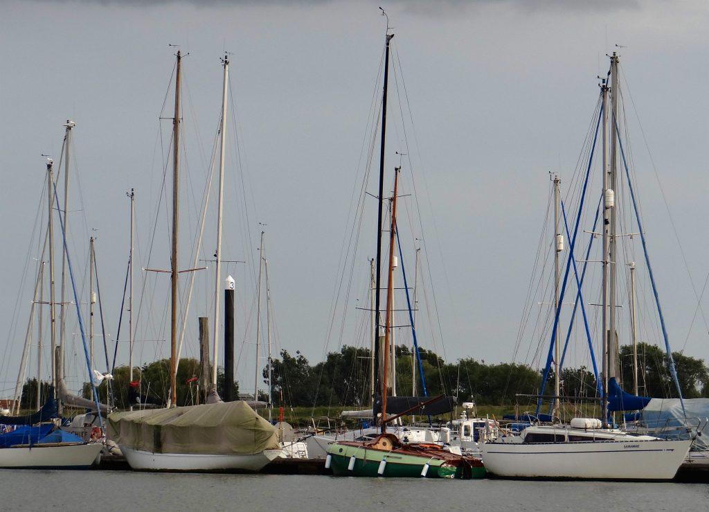A1 Hiding among the 'big boats' at Brightlingsea