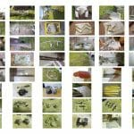 Collage- some of A154 parts rescued for other Atalantas