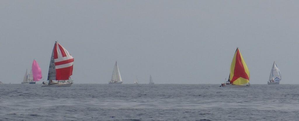 As we neared Antibes we were enveloped in a race fleet