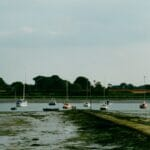Faireys at the bottom of the garden.  Lighter's Field - the Currey house at Bosham