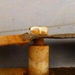 Stirrup Corrosion